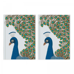 A5 and A5 Notebooks (6)